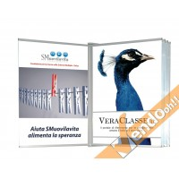 ESPOSITORE PUBBLICITARIO DA PARETE TIPO ALBO LIBRO PAGINE DA SFOGLIARE ALBO03